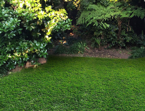 Caring for Your Artificial Grass – The Lazy Way