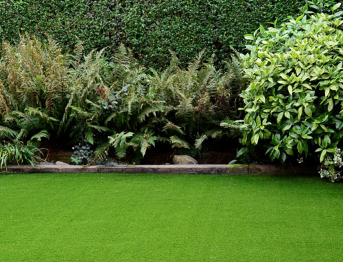 What is Dtex in Artificial Grass?